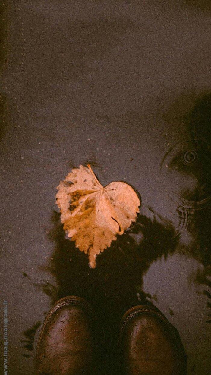 استوری پاییزی.jpg