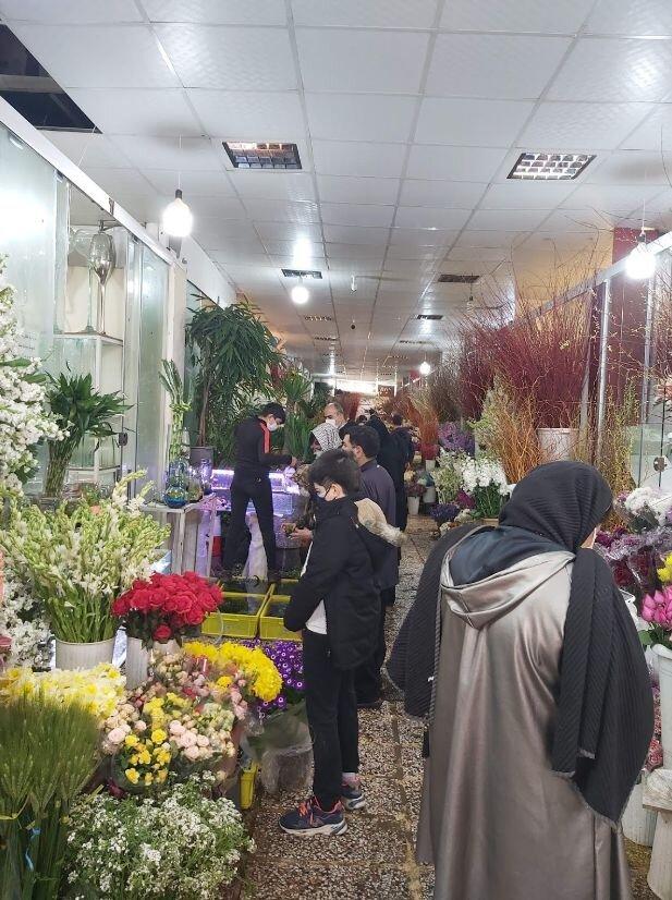 بازار گل و گیاه غرب تهران (6).jpg